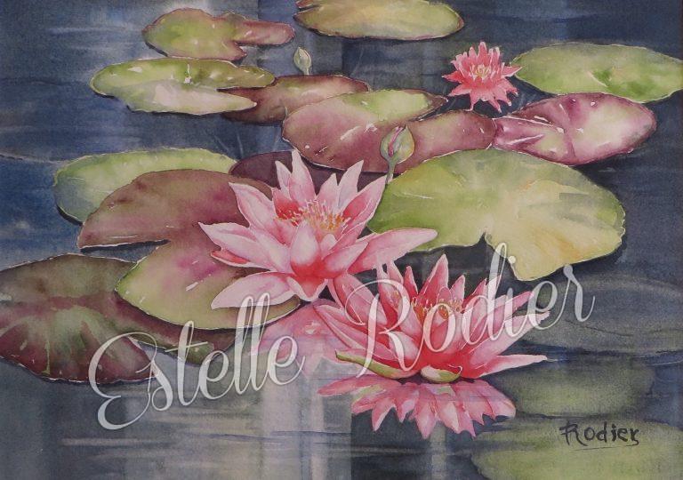 Fleurs d'eau (27cm x 37cm) $275 encadré