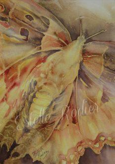 Papillon de lumière (vendu)