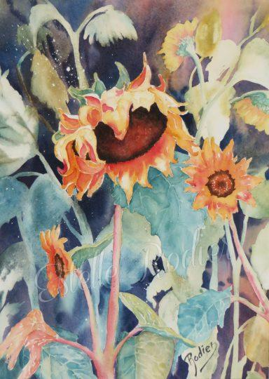 Tournesols d'automne (37cm x 27cm) $225